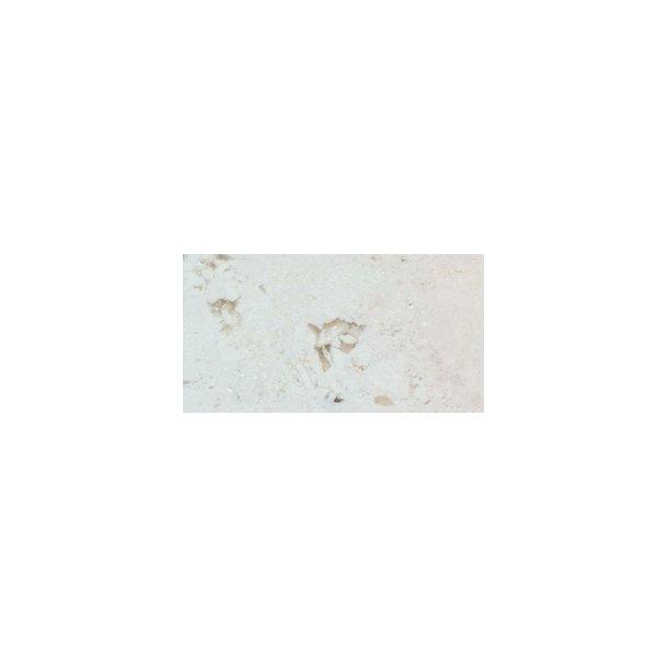 Bio Flame Nero- Fossil Stone (marmor-look)